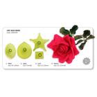 Комплект щампи - голяма роза