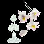 Комплект щампи - Singapore & Baby Orchid 3 бр